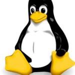 Basic UNIX/LINUX Commands