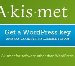 Akismet WordPress Key