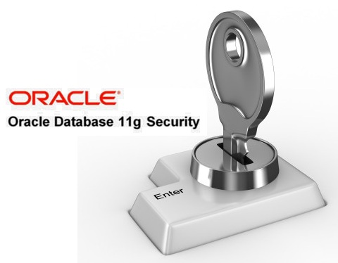 Oracle 11g Security