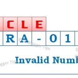 Ora-01722 Invalid Number