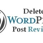How to Delete Post Revisions in WordPress